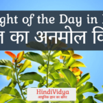 Thought of the Day in Hindi – आज का अनमोल विचार